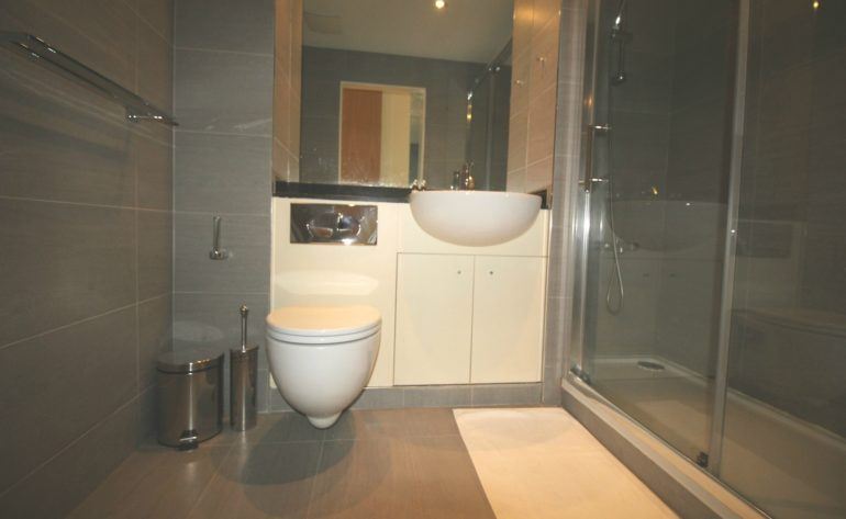 47 Hanover Dock - bathroom