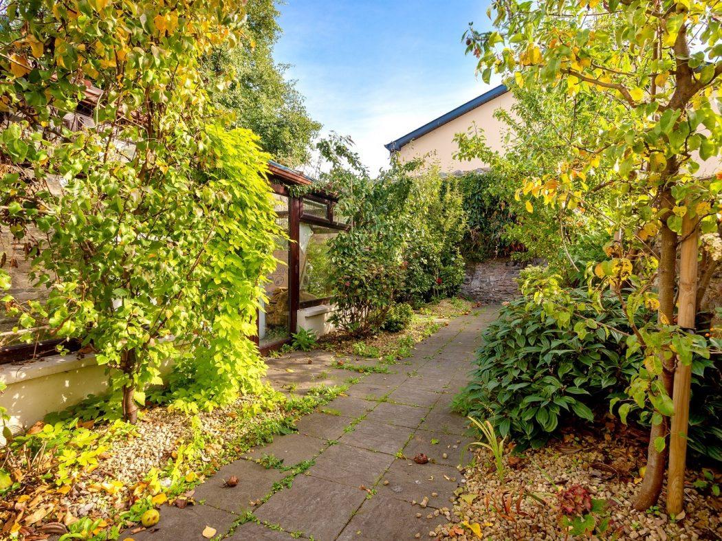 40 Synge St Back garden