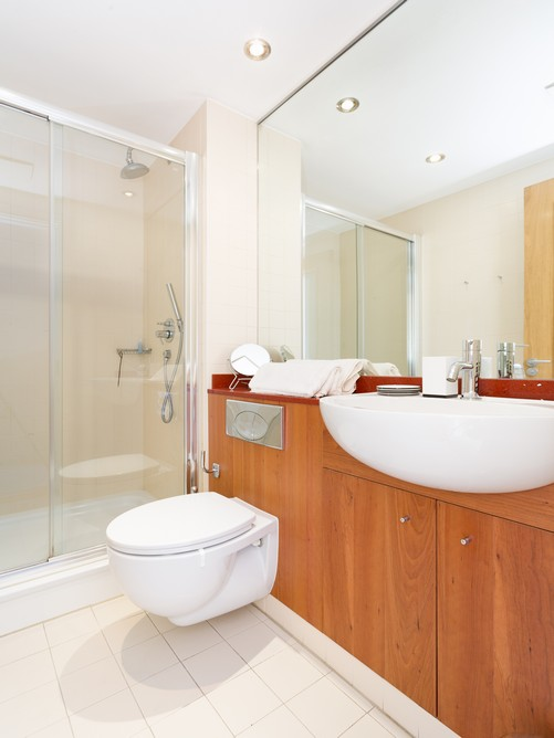 67 hanover dock-bathroom
